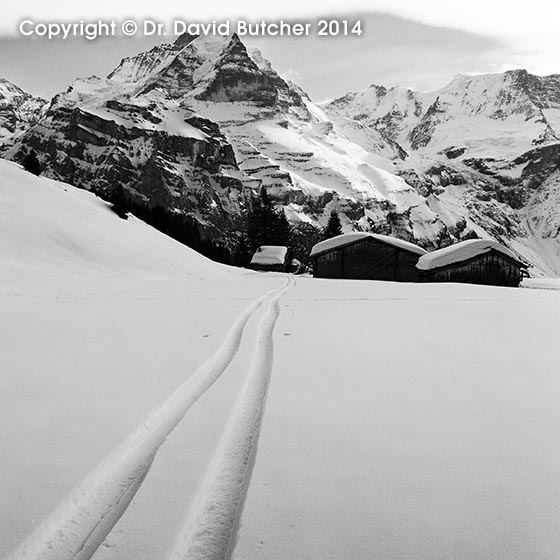 Jungfrau and Ski Tracks