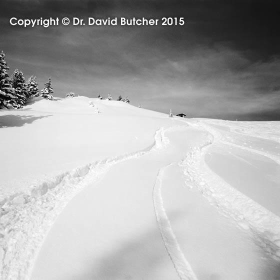 Kitzbuhel Ski Tracks, square
